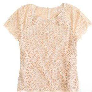 J Crew Lace Short Sleeve Shirt Tee Top Ivory 8